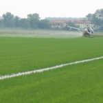helicopter rice fields